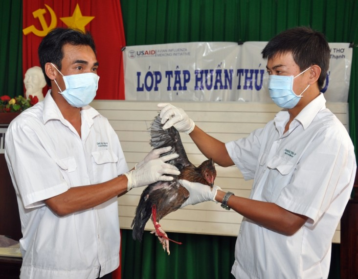 USAID helps combat avian and pandemic influenza in Vietnam.