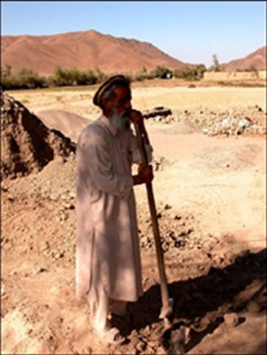 Mohammed Shah, one of five area farmers invested in a shallow well in Logar, pauses to chat while harvesting onions.