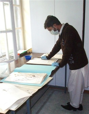 A student intern at Kabul University carefully cleans and documents plant specimens.