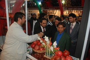 Afghanistan's pomegranates are on display at a trade show in India in 2010.