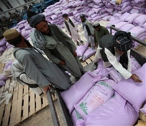 Farmer beneficiaries at a USAID/AVIPA Plus voucher distribution center in Nad-e Ali district load sacks of fertilizers onto the