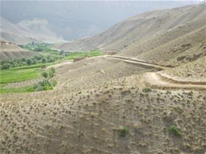 Refurbished roads across Ghor Province have re-established access to markets and services.