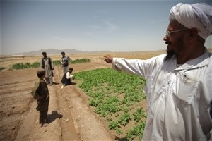 Mullah Mahboob points out a field watered by a karez cleaned by local laborers through the USAID-funded AVIPA Plus project.