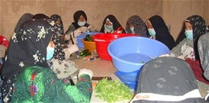 Women from the Saffron Makers Association of Jebrayel prepare pickles for processing.