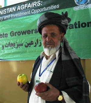 USAID helped Salam Jan, president of the Gardez Vegetable Association, by designing a logo and producing special cartons for tra