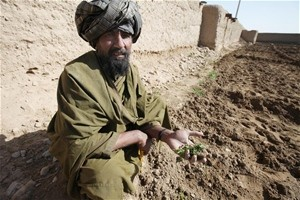 Tawoz, farmer from Zhari District, Kandahar Province