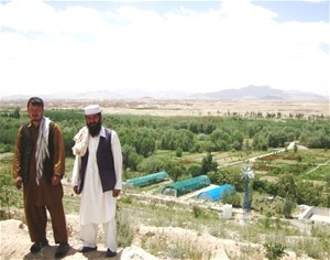 The Executive Representative of the Ghazni Agricultural Department in Jungal Bagh stands with an assistant on a hill