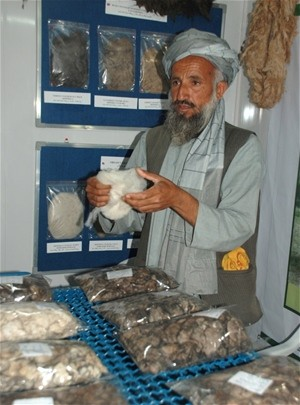Veterinarian Janan displays cashmere collected from Kandahar province at the Kabul International Fresh Fruit and Vegetable AgFai