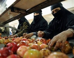 Afghan women sort pomegranates before they are processed into juice concentrate. Afghanistan's new facility will create 200 jobs