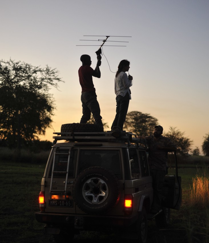 Fernandinho Mequicene scans the Gorongosa landscape looking for a radio-collared lion with scientist, Paola Bouley
