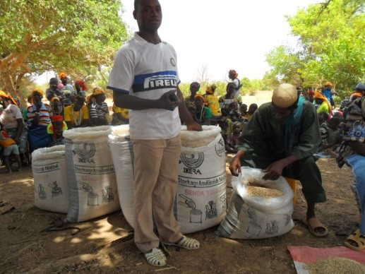 Ouoba Kampari, a program beneficiary, packs cowpea into triple-lined sacks.