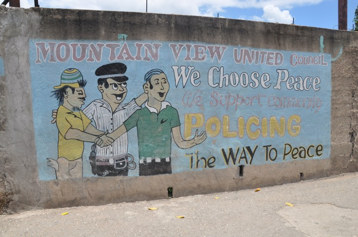 Community-based policing project