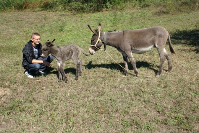 Alen Jusupovic, 23, and two of the donkeys (Ceca and Cica) on his farm in Zavidovici.