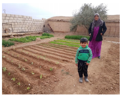 Syrian Mom Grows Vegetable Garden To Feed Her Children