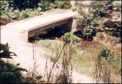 A bridge in the municipality of Puerto Caicedo in Columbia