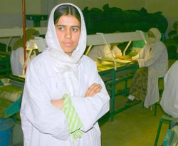 Noria Sedequi supervises 25 women at the Vegetable Dehydrates Factory in Parwan Province, Afghanistan.