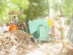 Farmers in El-Sheikh Eissa, in Egypt's eastern El-Sharkia province, operate machines that chop up banana tree waste.