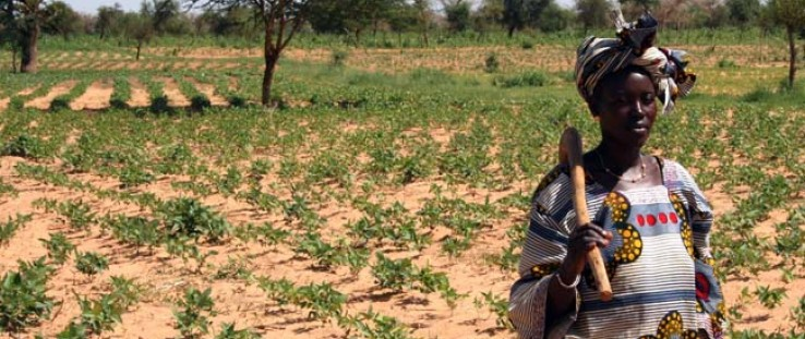 Malian Aïssata Konaté is president of her local women's group, supplying female farmers with high-yield seeds.