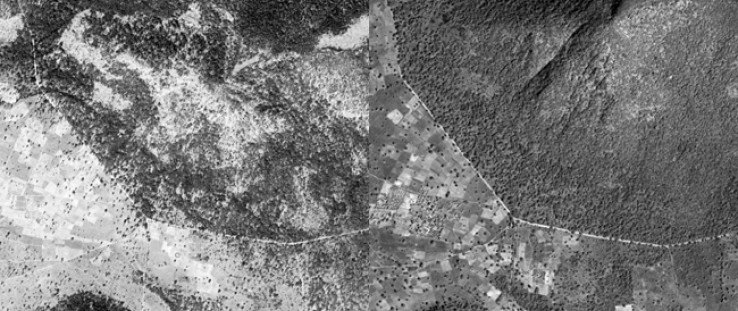 This satellite image comparison of the southern part of the Balayan-Souroumba National Forest from 1967, left, and 2007, right,