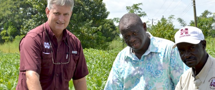 From left: Dan Reynolds, lead researcher for the Soybean Innovation Lab SMART Farm; Saaka Buah, director of the Savanna Agricultural Research Institute's station located in Wa, Ghana; and George Awuni, SMART Farm manager.
