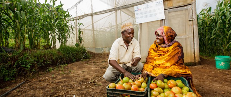 Tanzania Greenhouses Increase Yields