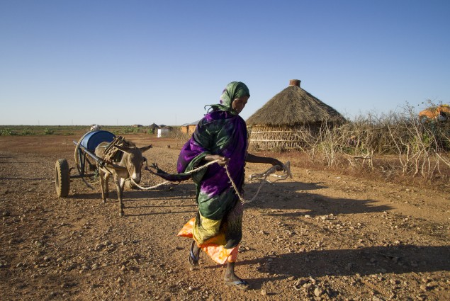 Barni Abdullahi Transports Water with her Donkey Cart