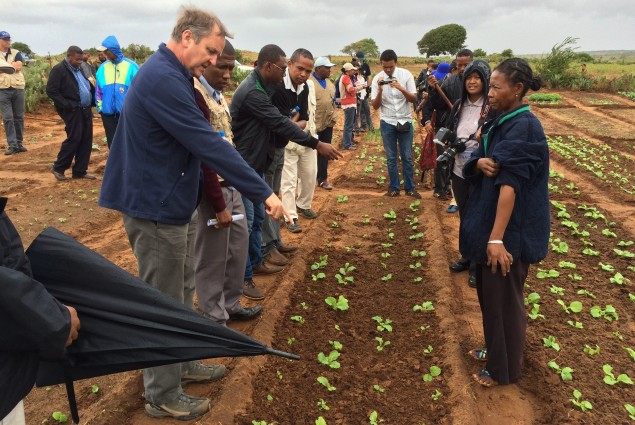 Ambassador Lane is shown a horticulture project run by the FAO