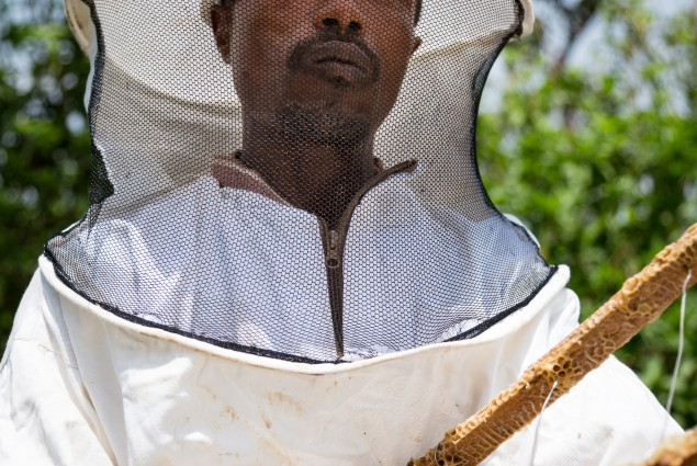Practical training proves transformational. Abebaw Melesew used the training he received from USAID to turn around his beekeeping business. He is now a model farmer, training others to succeed in honey production.