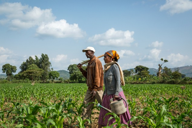 Creating a bright future. Of the 27 million people in Ethiopia living in chronic poverty and food insecurity, the majority are women. USAID has provided many rural women, including Danchile Kayamo (shown here with her husband Negussie Edao on their way to work in their garden of red peppers), with the tools and skills they need to support themselves and their families.