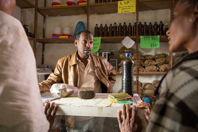 Chemera Sisay studied animal science and then worked in the government agricultural office. After spending three years as a community facilitator, he left to open a shop selling a range of agricultural supplies including animal feeds, vegetable seeds, veterinary products, farm tools, and equipment. The shop is so successful that he has rented a warehouse to store his supplies and opened a second branch in the next town.