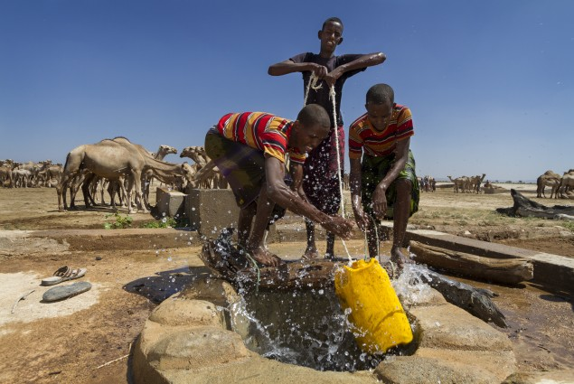 Getting Water for Camels