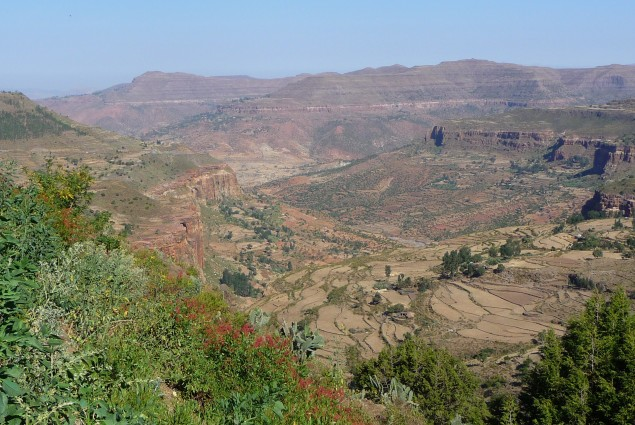 Tigray Valley