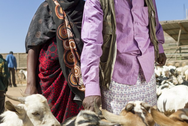 Livestock Traders Sofia Mohamed and Abdi Gursum