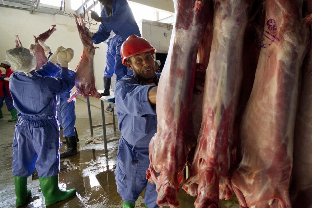 Meat Processed for Export