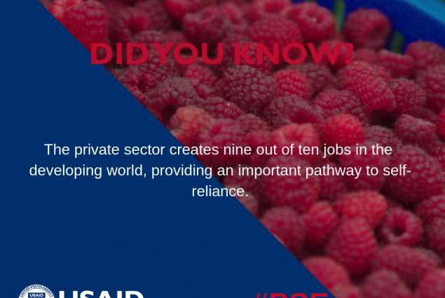 Did you know that the private sector creates nine out of ten jobs in the developing world, providing an important pathway to self-reliance?