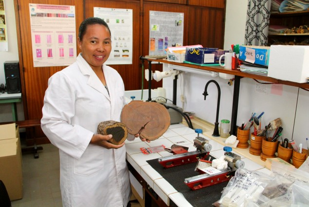Dr. Ravaomanalina's PEER-funded project is building Madagascar's first reference library of precious woods species.