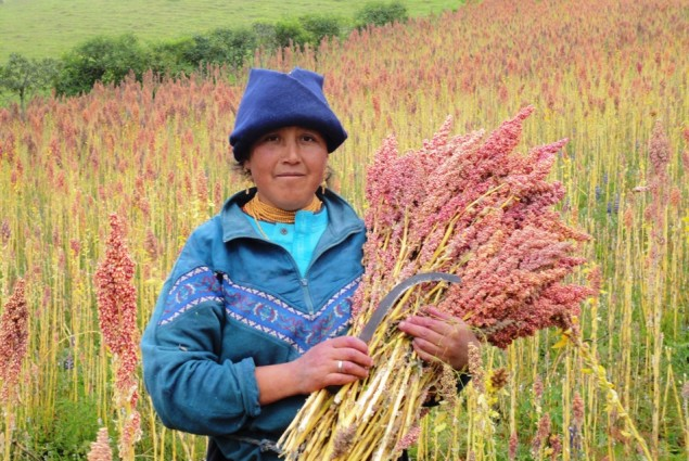 Woman with Quinoa