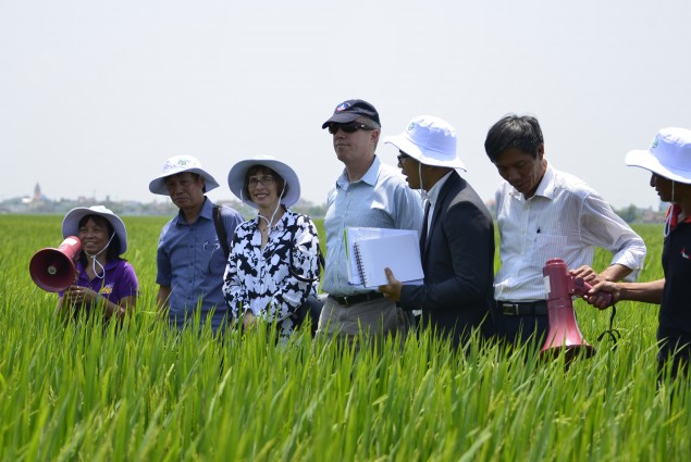 Ambassador Osius and Assistant Secretary Garber visit a climate-smart rice field supported by USAID's Vietnam Forests and Deltas
