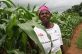 An exceptional entrepreneur - Malawi - Agriculture