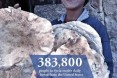Children of Syria: 383,300 people in Syria receive daily bread from the U.S.