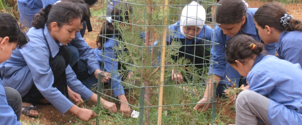 Students in Aqaba plant trees at their school as part of a community mobilization project