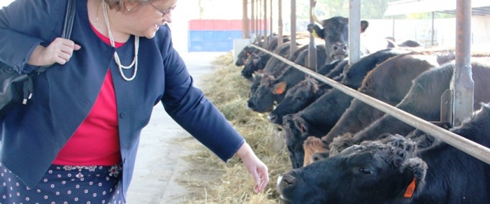 Ambassador visits cattle farm in Kyrgyzstan supported by USAID