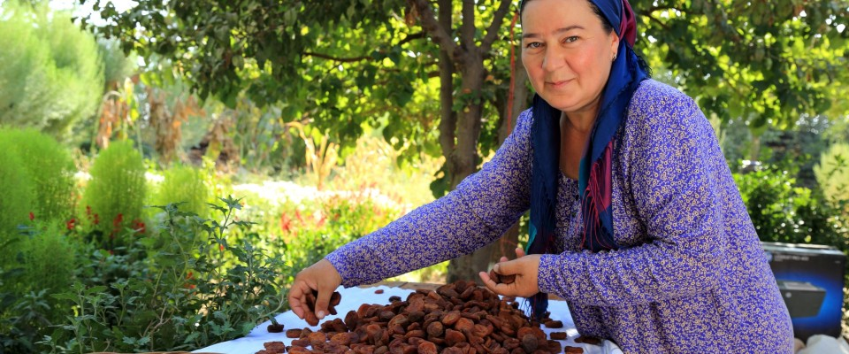 USAID helps women farmers boost their income and improve their families' livelihoods by improving farming practices and expanding agricultural production to include canning and dried fruit.
