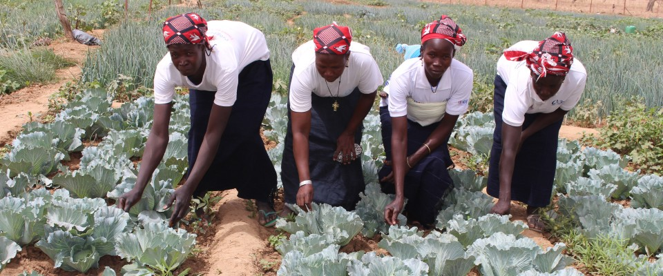 Women gardening in Burkina Faso