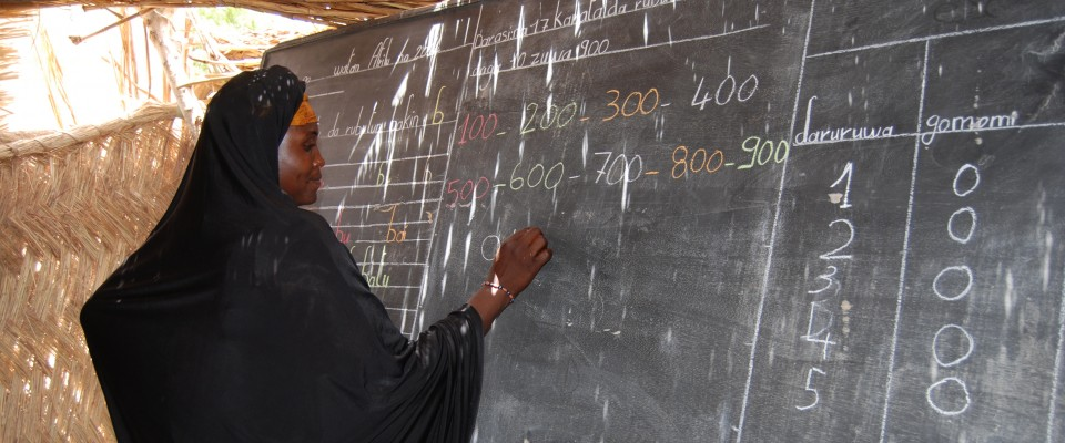 A Nigerien woman practices her reading and math skills