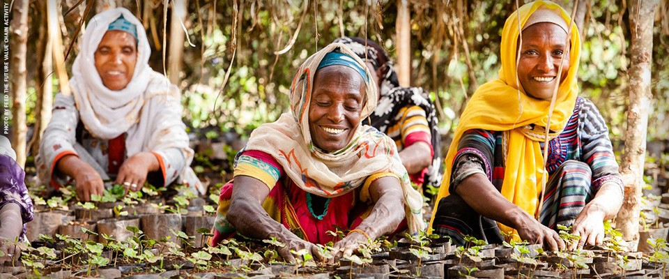 Image of women coffee farmers in Ethiopia