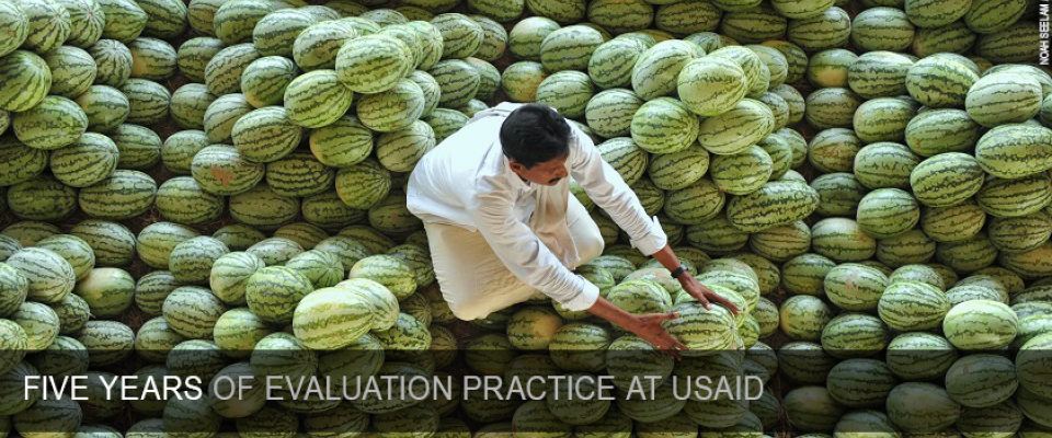 USAID's Evaluation Policy Five-Year Report