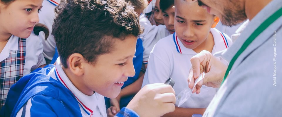 Photograph of school students in Paris, Colombia, participating in growing and releasing their own Wolbachia mosquitoes as part of a science project. Photo credit: World Mosquito Program Colombia