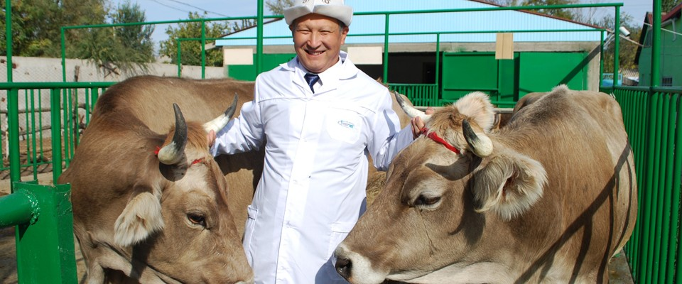 Kalmurat Djaparkulov, Head of the first Animal Reproduction Biotechnology Center in Chui province, northern Kyrgyzstan, opened w
