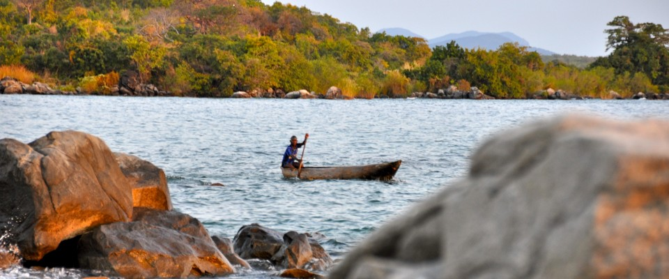 USAID protects the habitat of Lake Niassa, the most biodiverse freshwater lake on earth.